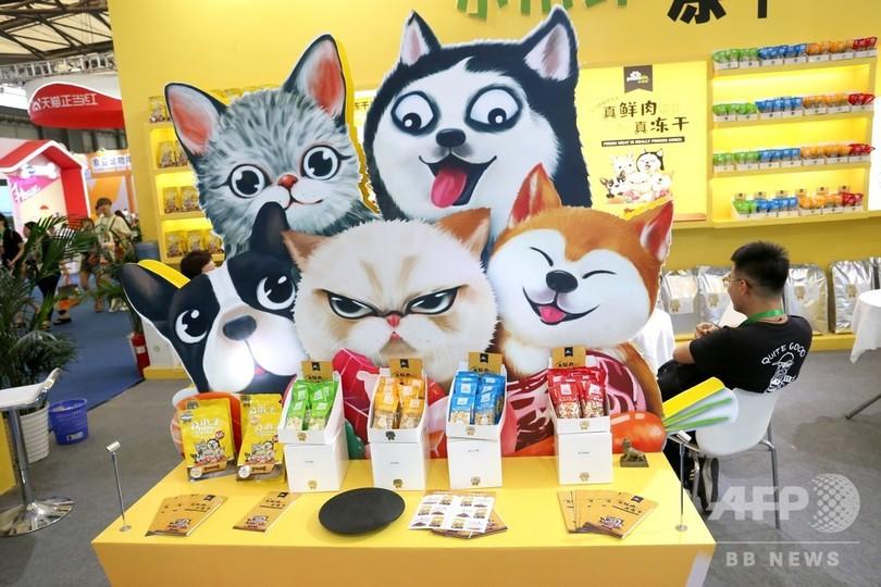 ペット用食品展示エリア(2019年8月21日撮影)。(c)CNS/陳玉宇