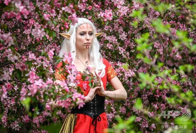 ロシアの首都モスクワのコローメンスコエ公園で、桜の花の前で写真撮影に臨む若い女性(2019年5月11日撮影)。(c)Mladen ANTONOV / AFP