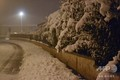 フランス南東部サンテティエンヌ近郊の雪に覆われた木々と道路(2019年11月15日撮影)。(c)Sylvain THIZY / AFP