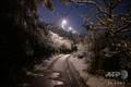 フランス南東部リヨン近郊の雪に覆われた木々と道路(2019年11月15日撮影)。(c)JEAN-PHILIPPE KSIAZEK / AFP